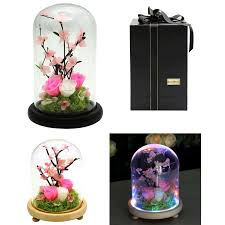 Forever Rose In Glass Dome Preserved Flowers Natural Fresh Rose Glass Gifts Grass Flower