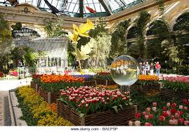 Botanical Gardens Hotel Conservatory Botanical Gardens Inside Bellagio Stock Photos