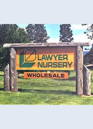 lawyer nursery wholesale trees and shrubs conifers budded