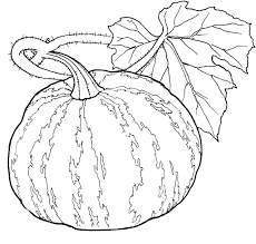 printable pumpkin coloring pages coloring me