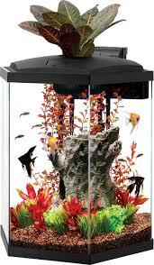 Wohnzimmertisch Aquarium Die Besten 25 Hexagon Aquarium Ideen Auf Pinterest Aquarium