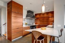 Modern Kitchen For Cheap Fresh Cheap Mid Century Modern Kitchen Remodel Ideas 23230