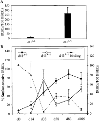 reversal pattern recognition recognition of the irbc surface and reversal of in vitro
