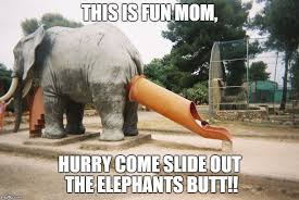 Elephant Meme - who thought this was a good idea imgflip