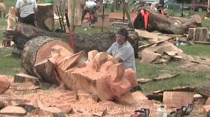 barbara alan record chainsaw wood sculptures at woodfest wales