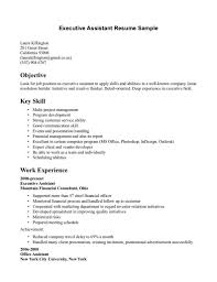 It Skills Resume Sample by Day Camp Counselor Sample Resume Financial Business Analyst Cover