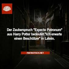 zauberspr che latein 13 best dobby is a free images on harry potter