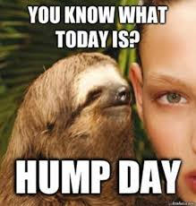 Hump Day Meme - very funny wednesday hump day meme pics wishmeme