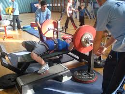 file bench press almog dayan jpg wikimedia commons