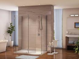 Bathroom Shower Windows Bathroom Walk In Shower Pictures With Window Blinds Walk In