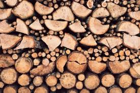 wood grain 48 best free grain wood log and texture photos on