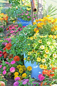 how to control the weeds in your vegetable garden cottage at the