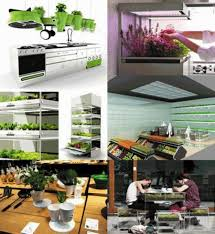 gallery of various types and models kitchen nano garden led