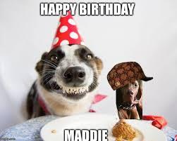 Happy Birthday Meme Dog - birthday dog meme generator imgflip