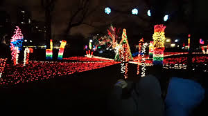 Zoo Light Chicago by Lincoln Park Zoo Lights Youtube