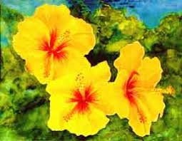 Yellow Hibiscus Flowers - hawaii hibiscus flowers art paintings u0026 prints for sale by by