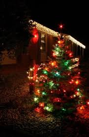 Outdoor Colored Christmas Lights by 22 Best Residential Christmas Lights Images On Pinterest