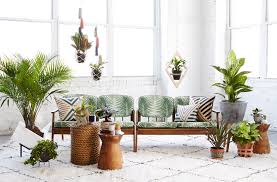 Interior Design Basics How To Use Plants In The Interior U2013 Basics Of Interior Design U2013 Medium