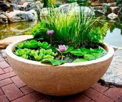 Mini Water Garden Ideas Mulderranch