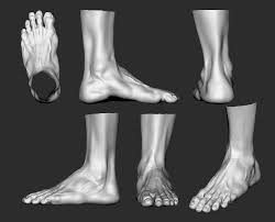 Female Body Reference For 3d Modelling 35 Best References Topology Leg Feets Knee 3d Images On Pinterest