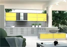 gray and yellow kitchen ideas grey kitchen ideas grey yellow kitchen grey high gloss kitchen