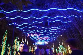 christmas lights in alabama alabama discoveries 4 bellingrath gardens magic christmas in inside