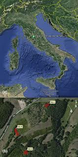 Orvieto Italy Map by Crosti R Agrillo E Ciccarese L Guarino R Paris P Testi A