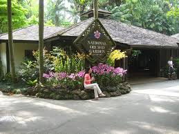 national orchid garden wikipedia