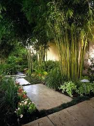 japanese style garden plants asian inspired garden design bamboo