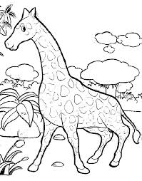 giraffe coloring pages coloringpages1001