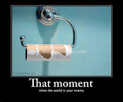 Toilet Paper Roll Meme - th id oip vgiv3pg gsigtnm6fvelpwhagm