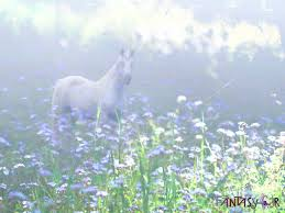 misty unicorn desktop wallpaper 1024 x 768 woo jr kids activities