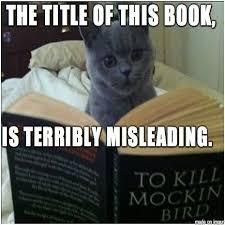 To Kill A Mockingbird Cat Meme - frontline killing pets meme yahoo image search results animal