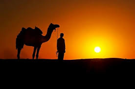 sunset alone wallpapers alone in the desert sunsets u0026 nature background wallpapers on
