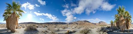 anza borrego desert borrego desert state park palms ii 360