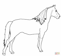 mustang horse drawing morgan horse coloring page free printable coloring pages