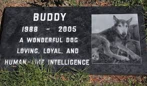pet burials range from bottom of sea to sky above the san diego