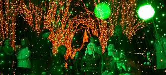 Discount Tickets To Atlanta Botanical Gardens Discounts For Garden Lights Nights At The Atlanta