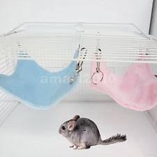 Hamster Bed 192099534459 1 Jpg