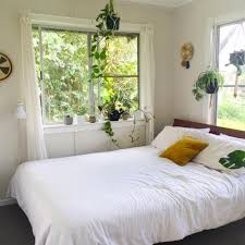 best plants for bedroom green plants in the bedroom the best of the best copper and cross
