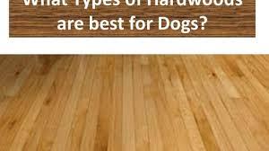 amazing types of hardwood floors roselawnlutheran for types of
