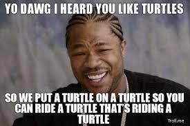 I Like Turtles Meme - do you like turtles i like turtles know your meme