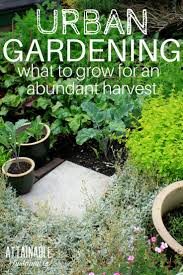 What Is An Urban Garden 5884 Best Best Gardening Tips From Gardeners Images On Pinterest