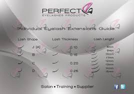 eyelash guide perfect eyelashes products