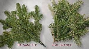 traditional vs realistic tree balsam hill