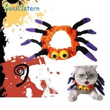 online get cheap pet spider aliexpress com alibaba group