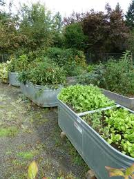 How To Make A Raised Bed Vegetable Garden - 16 vegetable gardening nc state extension publications