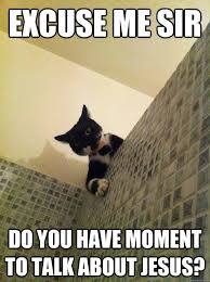Jesus Cat Meme - image 576238 excuse me sir do you have a moment to talk