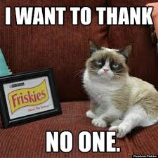 Create A Grumpy Cat Meme - create tardar sauce the grumpy cat epeak world news