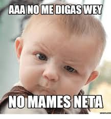 Neta Meme - aaa no medigaswey no mames neta memescom meme on me me